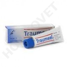 Heel Traumeel ointment in problems with the support and musculoskeletal system